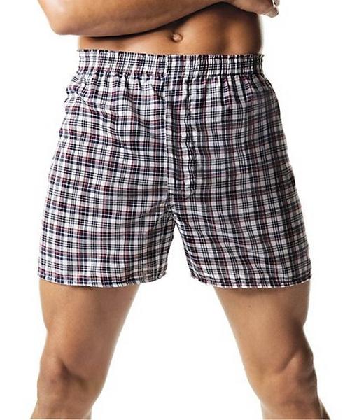 Hanes Men's Tartan Boxers with Comfort Flex® Waistband 2-Pack men Hanes