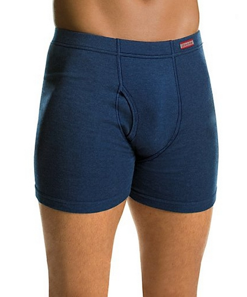 Hanes Men's TAGLESS® Boxer Briefs with ComfortSoft® Waistband 4-Pack (2X-3X) men Hanes