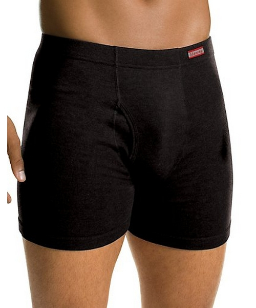 Men's TAGLESS Boxer Briefs with ComfortSoft Waistband 2-Pack men Hanes